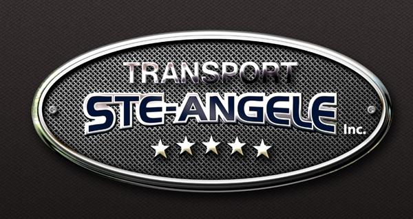 http://transportsteangele.com/wp-content/uploads/2016/06/logo-petit-2016.jpg