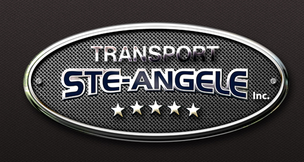 https://transportsteangele.com/wp-content/uploads/2016/06/logo-petit-2016.jpg